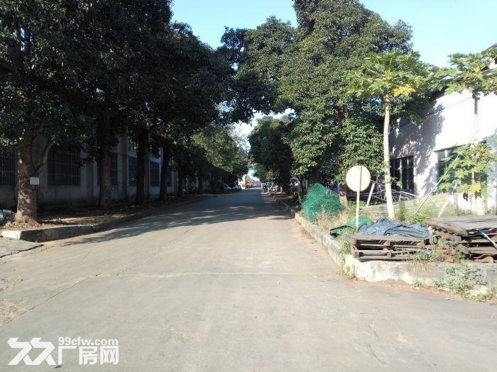 秀英−或万达广场附近仓库出租-图(2)