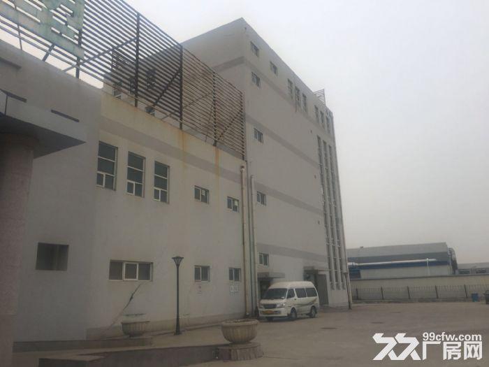 津南八里台3150平米厂房出租证照齐全可办环评-图(2)