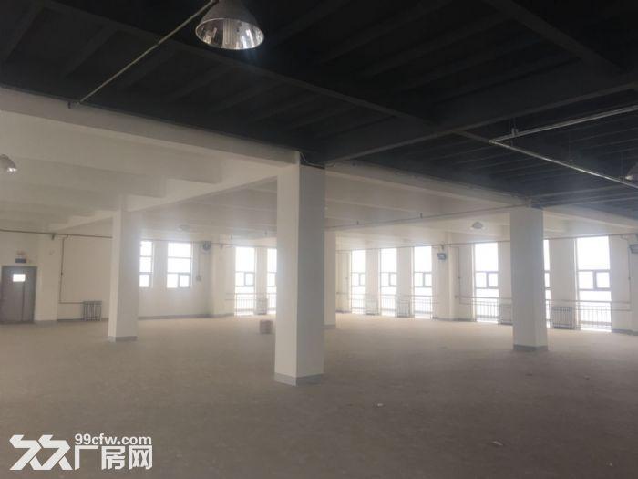 津南八里台3150平米厂房出租证照齐全可办环评-图(3)