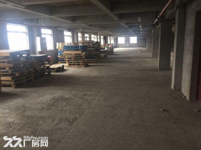 茶园新区库房办公室300,400,2000平出租-图(3)