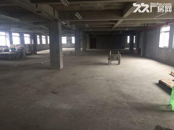 茶园新区库房办公室300,400,2000平出租-图(5)