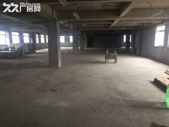 茶园新区租1017m2库房,送1450m2-图(2)