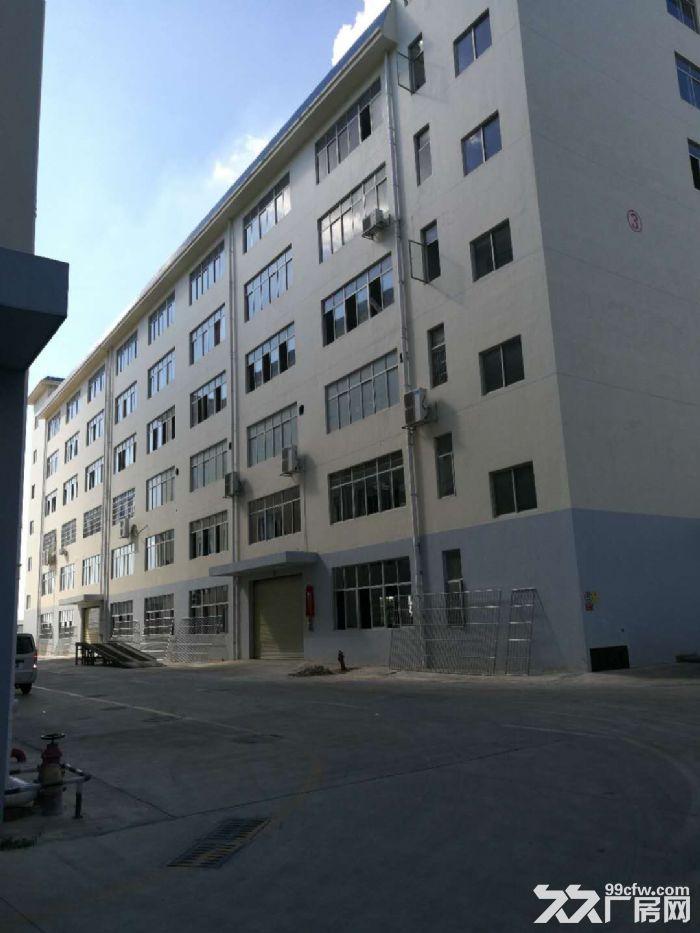 沙井1楼5楼标准工业厂房,带50年独立产权,仅3字头即可拥有-图(4)