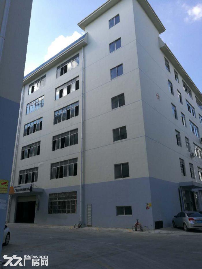 沙井1楼5楼标准工业厂房,带50年独立产权,仅3字头即可拥有-图(5)