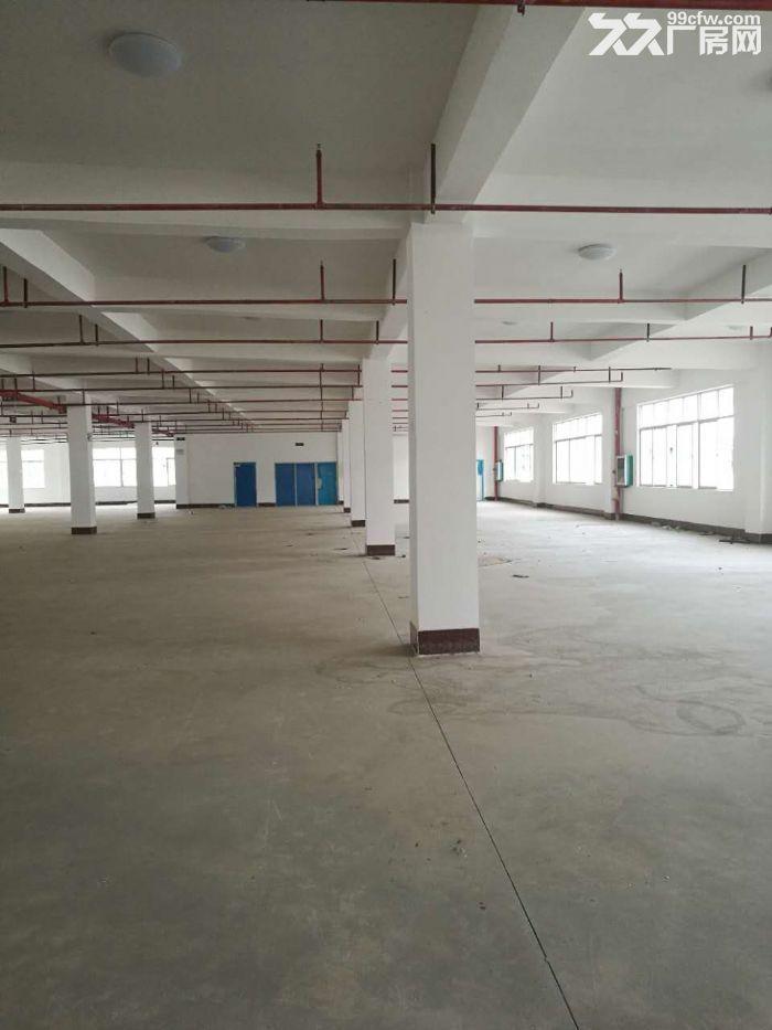 沙井1楼5楼标准工业厂房,带50年独立产权,仅3字头即可拥有-图(7)