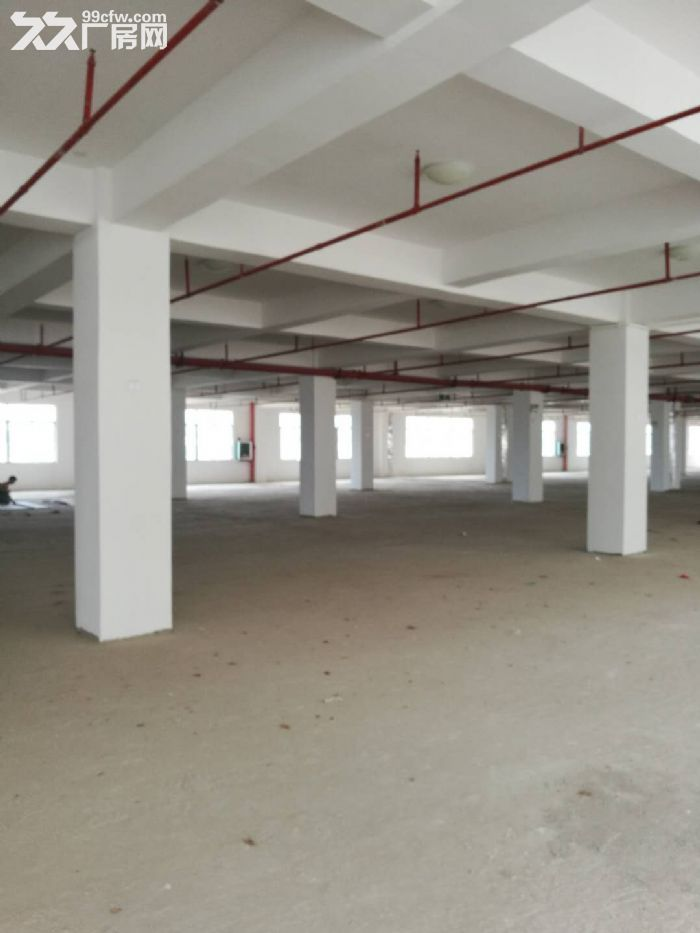 沙井1楼5楼标准工业厂房,带50年独立产权,仅3字头即可拥有-图(8)