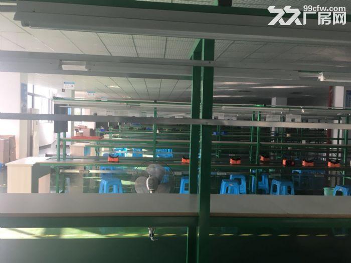 茶园新区总面积3500m2厂房办公配套出租-图(1)