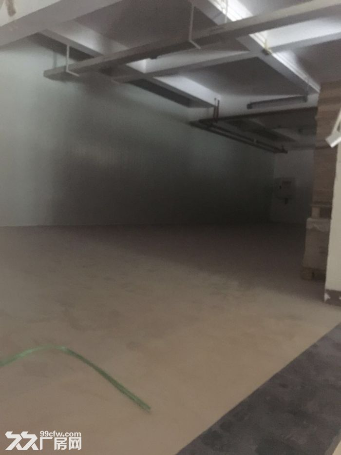 茶园新区400m2小型库房出租-图(2)