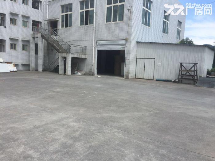 茶园新区400m2小型库房出租-图(3)