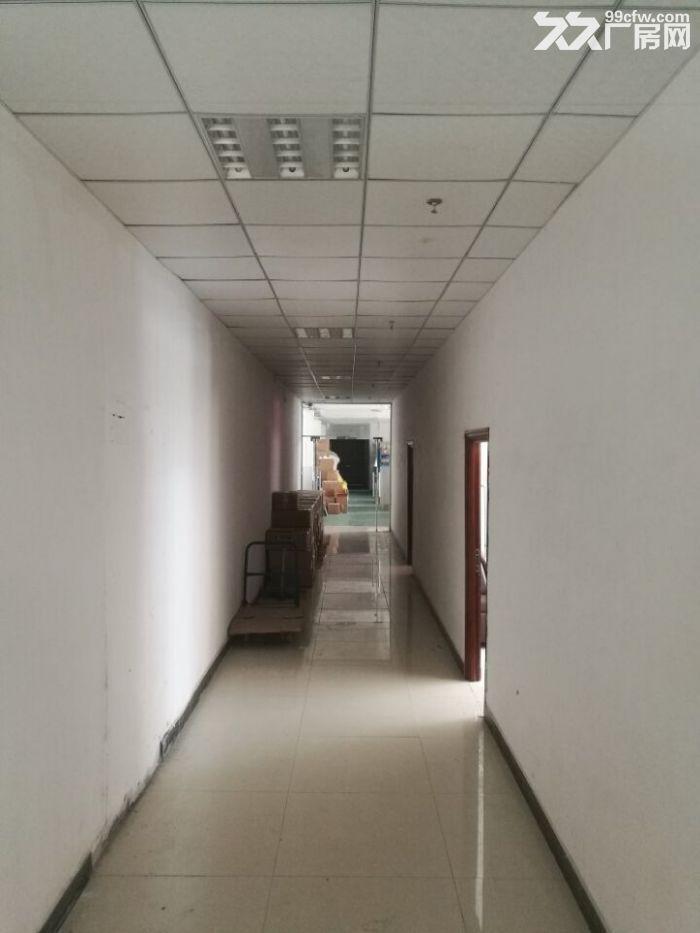 凤岗金凤凰工业园楼上厂房出租850平方,价格便宜-图(3)