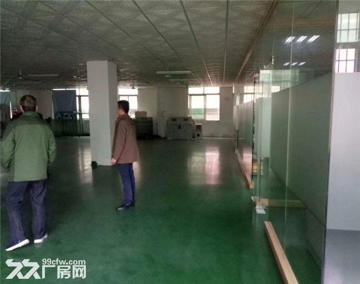 沙井国道边850平米带装修厂房出租-图(1)
