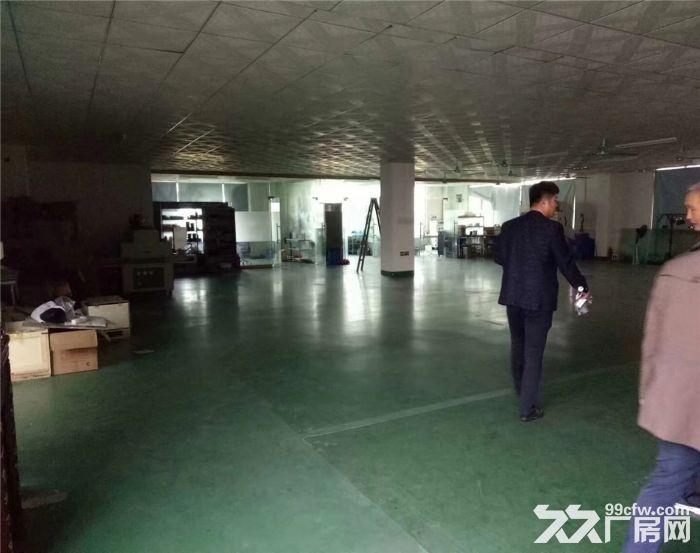 沙井国道边850平米带装修厂房出租-图(4)