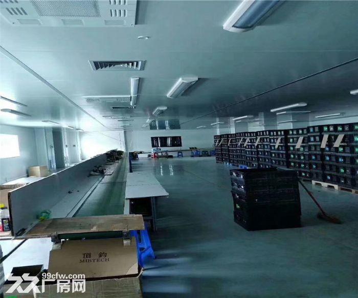 沙井共和丽城科技园2300平米带装修厂房出租-图(1)