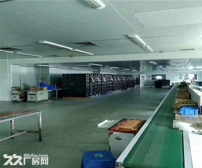 沙井共和丽城科技园2300平米带装修厂房出租-图(3)