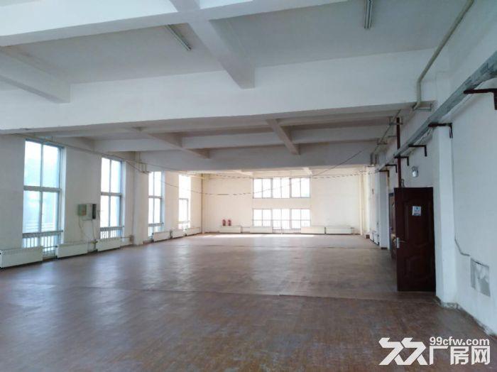 沈北虎石台1200平框架厂房出租-图(4)