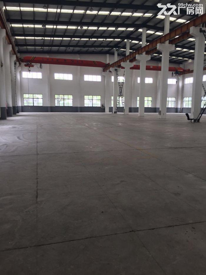 香泾路7500平方单层高10米已架行车厂房仓库出租,可分割,绿证-图(2)