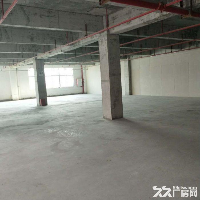 科学城8400方厂房招租可分租-图(2)