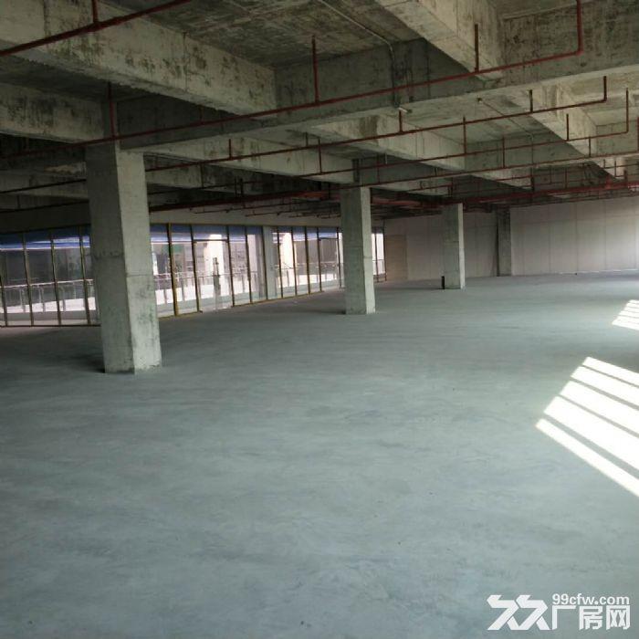 科学城8400方厂房招租可分租-图(3)