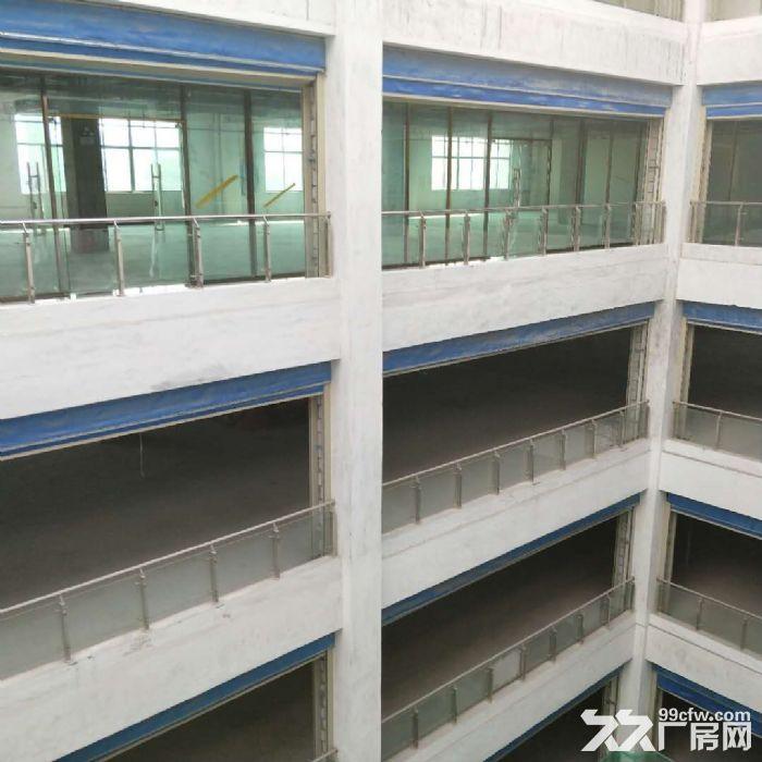 科学城8400方厂房招租可分租-图(4)