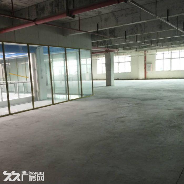 科学城8400方厂房招租可分租-图(6)