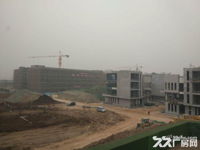 蔡家坡百万平米标准化厂房出售-图(2)