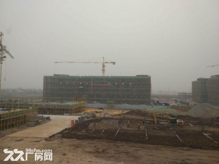 蔡家坡百万平米标准化厂房出售-图(5)