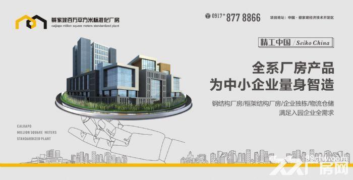 蔡家坡百万平米标准化厂房出售-图(4)