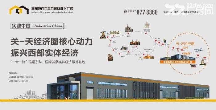 蔡家坡百万平米标准化厂房出售-图(6)