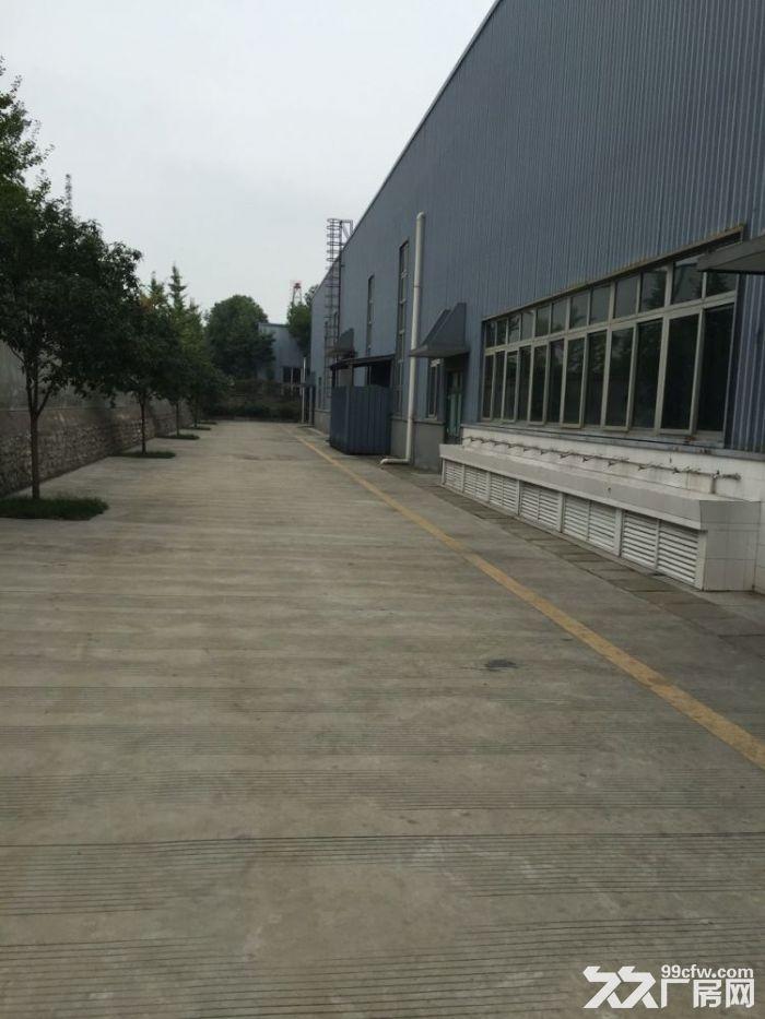 出租新都9000平米工业园工业东区厂房-图(1)
