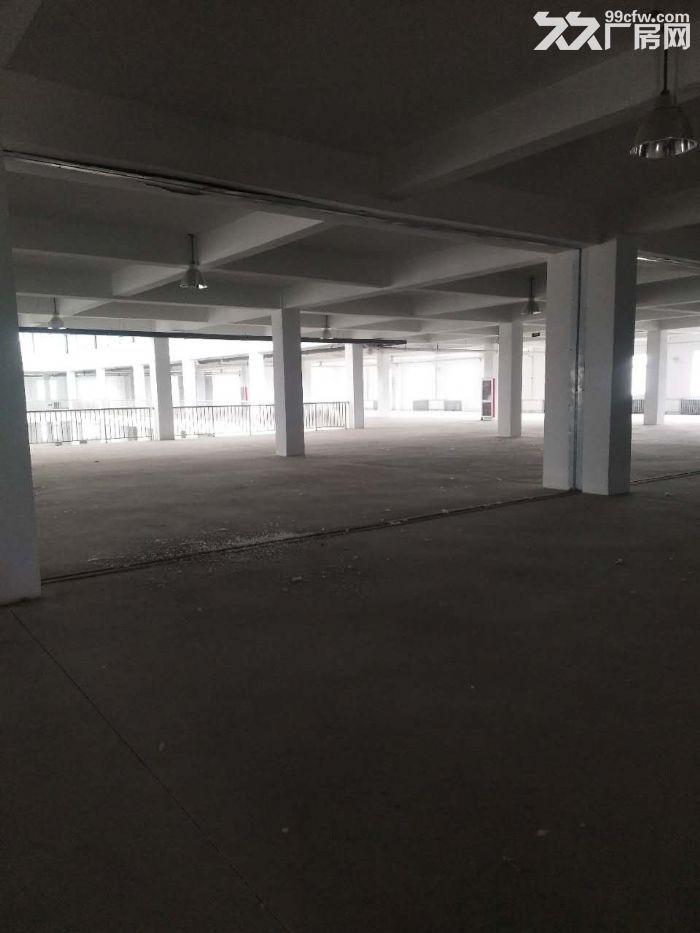 9500平米独院研发楼手续齐全1.2元-图(5)