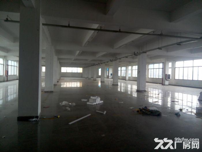 同安同集路二楼1400平厂房出租-图(1)