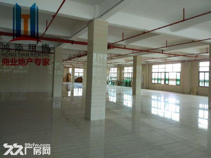 地铁口2000方厂房招租-图(4)