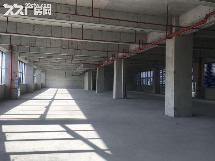 专业医疗企业厂房GMP/洁净车间医疗园区-图(2)