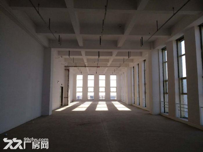 5.6米层高双倍空间利用150−2000平米生态办公-图(7)
