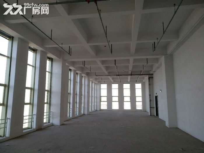 醇熟商务研发办公5.6米层高loft现房租售-图(8)