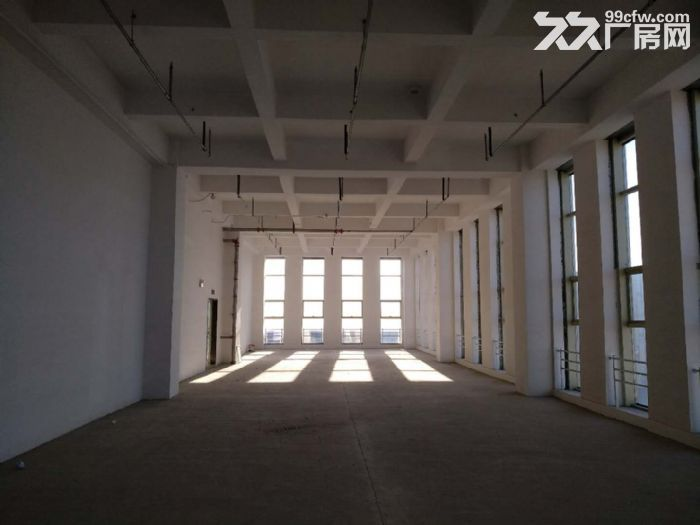 醇熟商务研发办公5.6米层高loft现房租售-图(7)