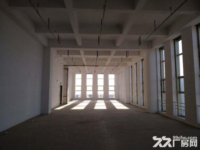 150至2000平米商务办公南站核心商务区可租可售-图(7)