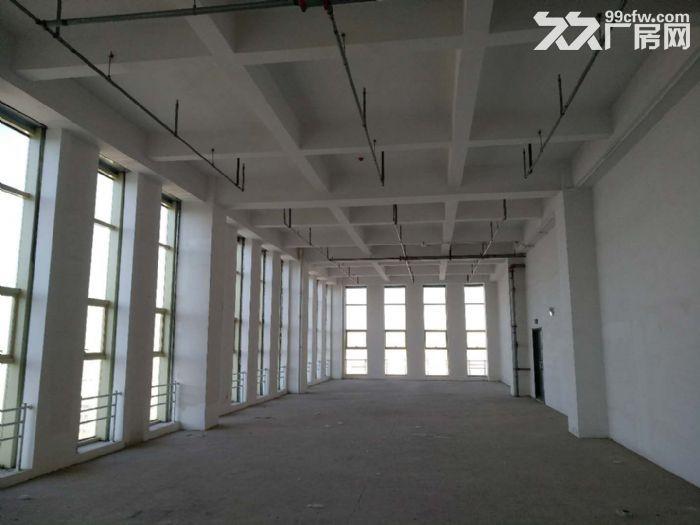 150至2000平米商务办公南站核心商务区可租可售-图(8)