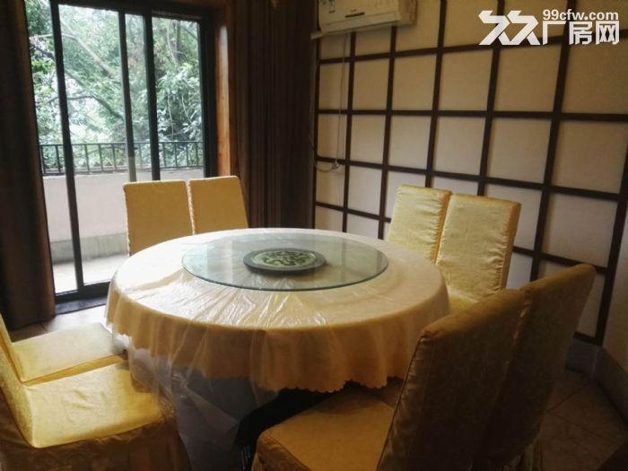 南山泉水一条街1000平,精装餐饮、住宿类酒店出租-图(2)