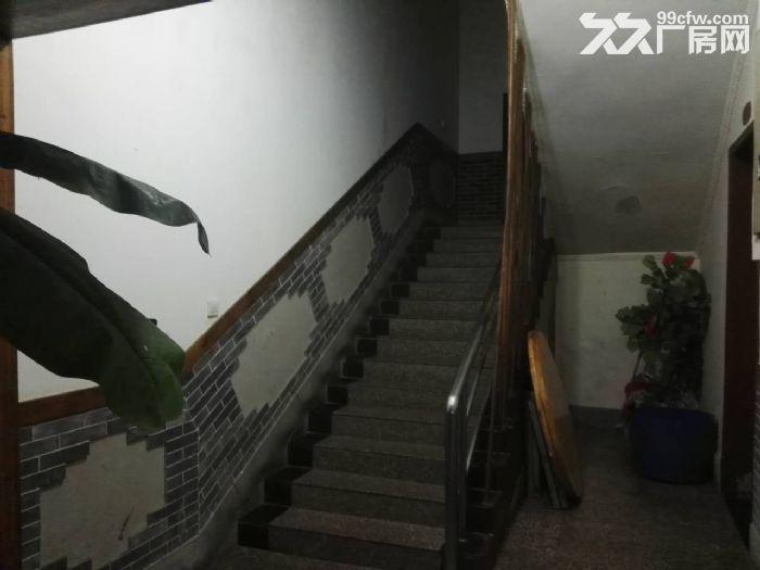 南山泉水一条街1000平,精装餐饮、住宿类酒店出租-图(5)