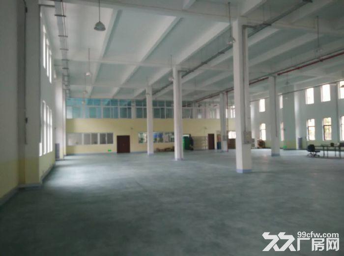 【英业达旁,11.5米单层钢构厂房1000−5000㎡租售】-图(8)