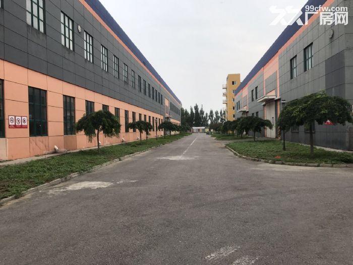 高10米标准库房19000平米手续齐全-图(1)