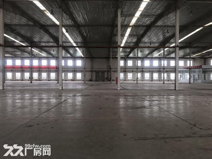 高10米标准库房19000平米手续齐全-图(3)