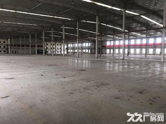 高10米标准库房19000平米手续齐全-图(4)