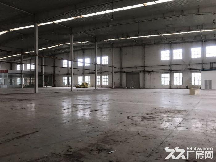 高10米标准库房19000平米手续齐全-图(5)