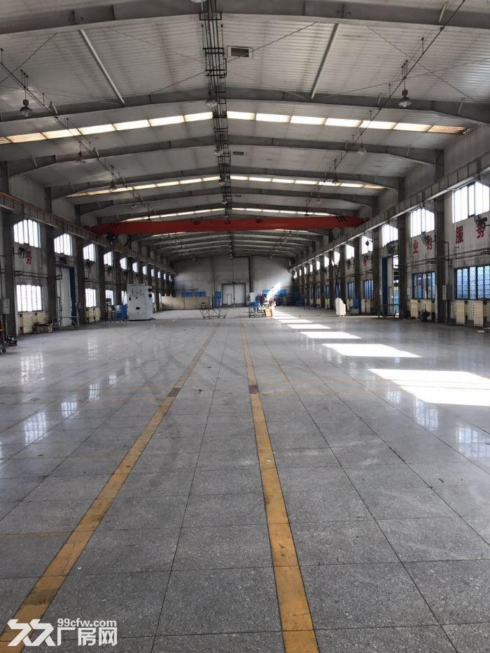 高10米标准厂库房2500平米手续齐全-图(3)
