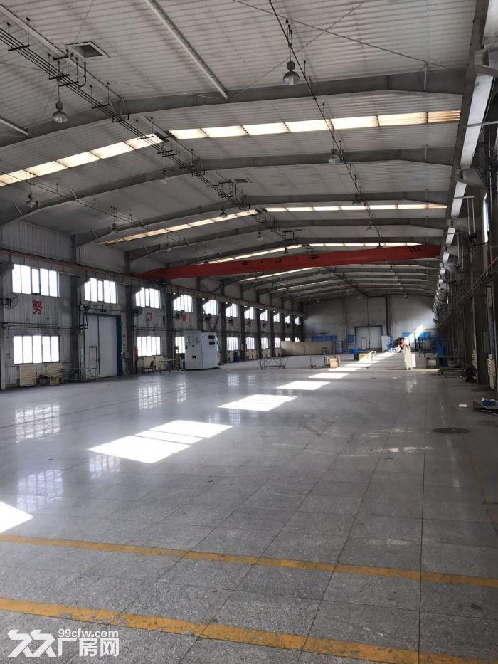 高10米标准厂库房2500平米手续齐全-图(4)