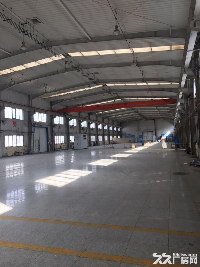 高10米标准厂库房2500平米手续齐全-图(5)