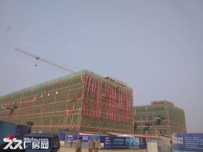 百万平米标准化厂房出售或出租-图(3)