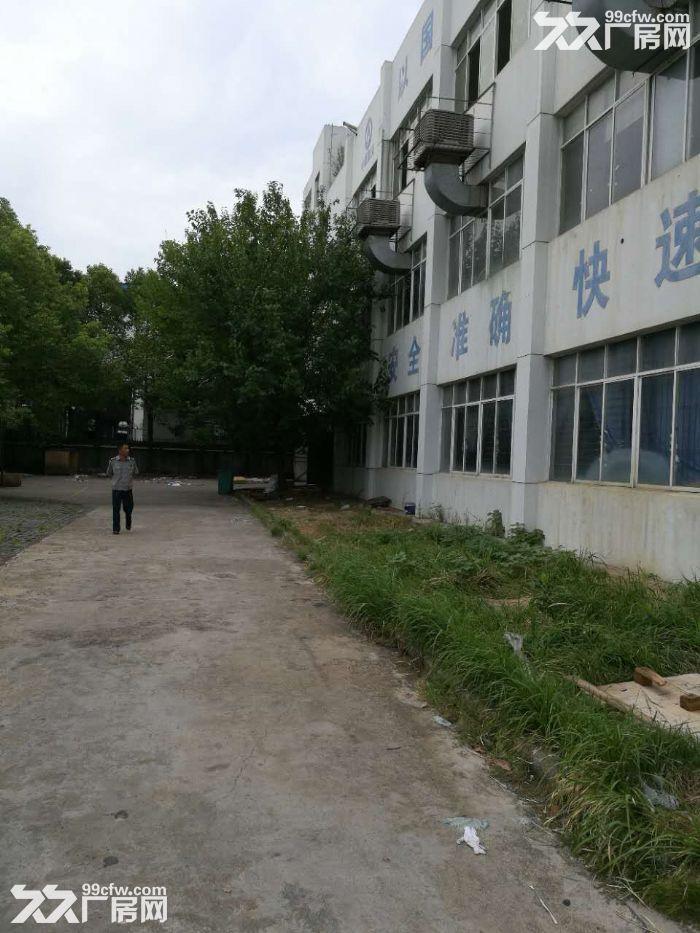 沌口经济开发区一层1073平和1750平两间带行吊厂房招租-图(1)